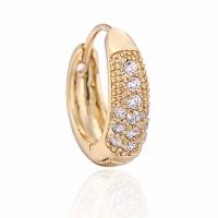 Женская золото 18K Циркон Серьги ER0487